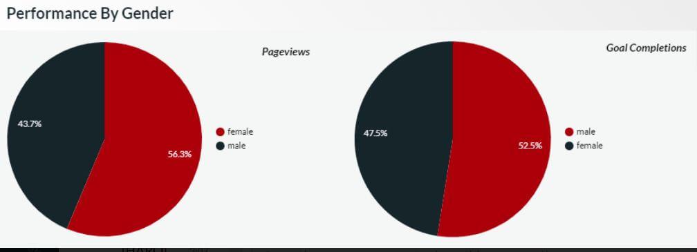 Demographics Is An Important Google Analytics Metric