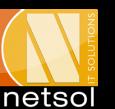 Netsol IT Solutions Pvt. Ltd