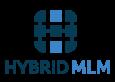 Hybrid MLM